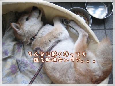 """""""55!伝説""""_c0049950_10394617.jpg"""