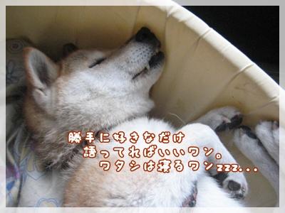 """""""55!伝説""""_c0049950_10404054.jpg"""