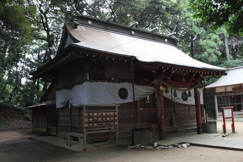 東日本一の杉の木_a0157159_00569.jpg