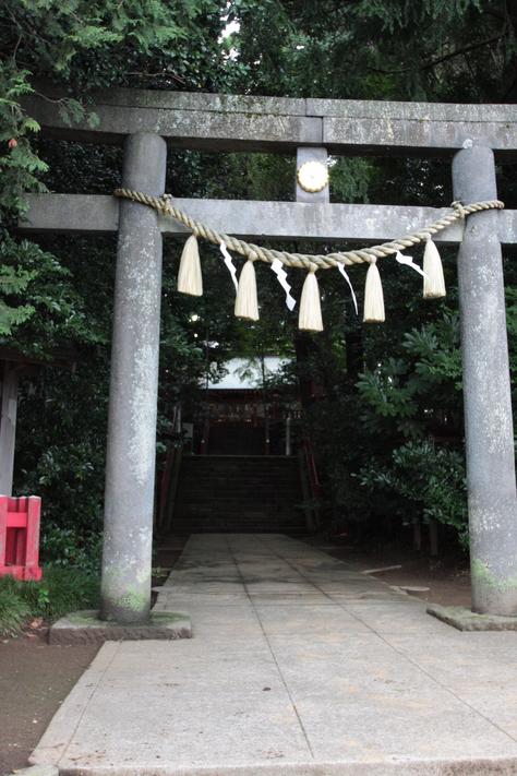東日本一の杉の木_a0157159_23592637.jpg