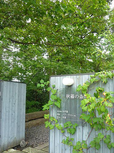 奈良の都は 今盛なり 平城遷都1300年祭の奈良 法華寺 .゚。*・。☆ † _a0053662_17554158.jpg