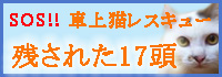 a0066779_1891886.jpg