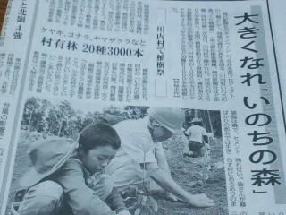 いのちの森づくりが新聞記事に_d0027486_78537.jpg