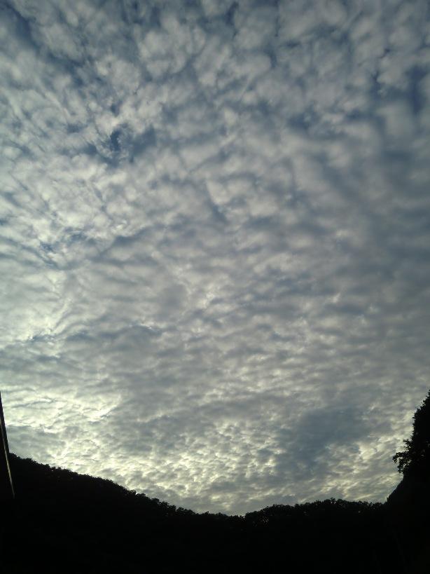 ウロコ雲と那須あーとクラフトフェア_f0227395_18545463.jpg