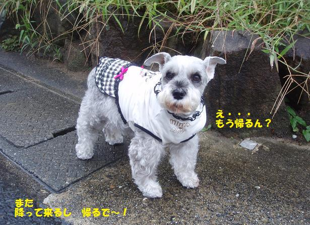 c0098501_19303760.jpg
