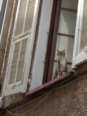 モナコ公国を見下ろす町、ラ・チュルビ_d0116009_335932.jpg