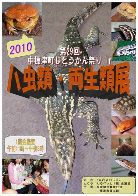2010年9月30日(木):日曜日、蛇や蜥蜴が大集合_e0062415_1732854.jpg