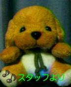 a0120325_001312.jpg