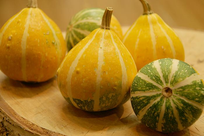 かぼちゃ_c0120834_1820458.jpg