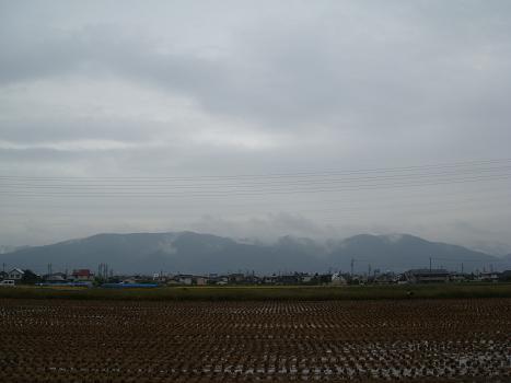 雨の木曜日_a0014840_2024871.jpg