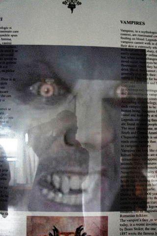 """ルーマニア(21) """"吸血鬼ドラキュラ""""のブラン城 (4)_c0011649_726128.jpg"""