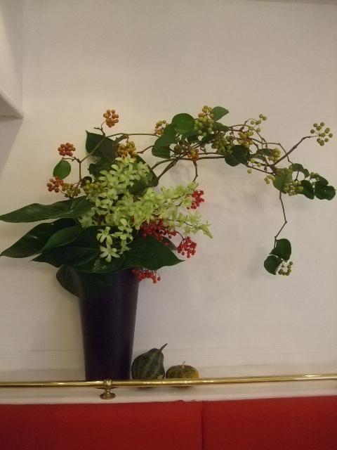 オークリーフ(ミストリーベロ開店の花)_f0049672_16542781.jpg