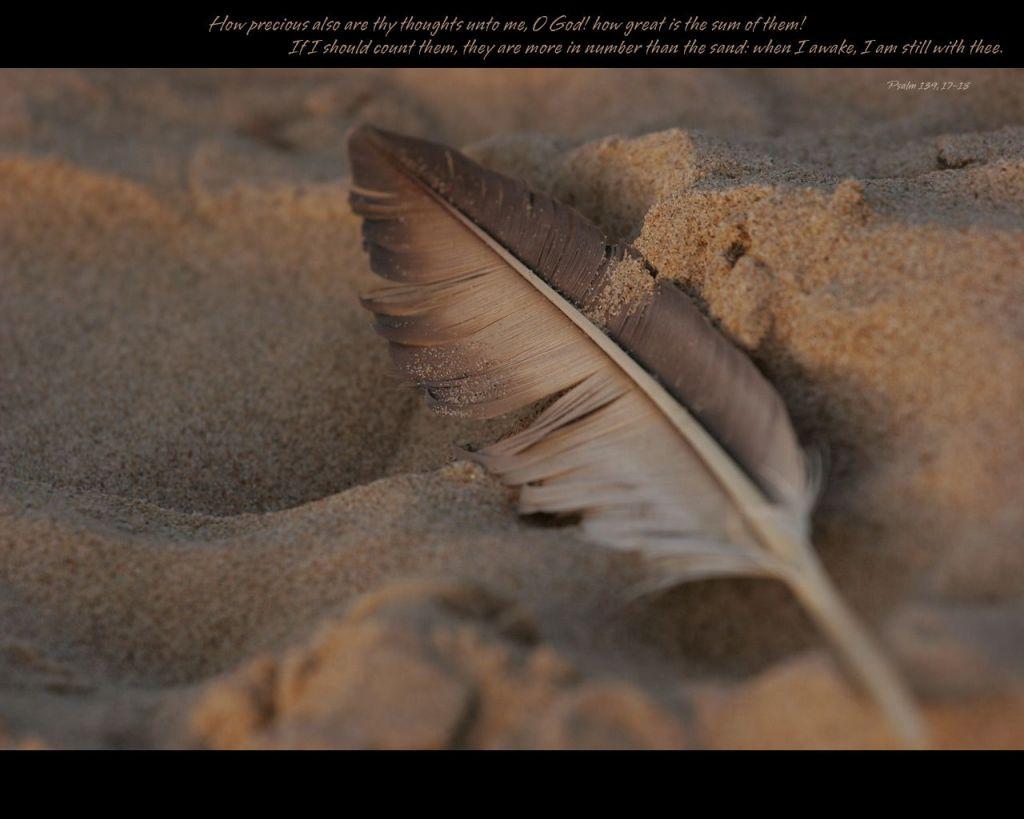 9月30日アモス7-9章『主に立ち返る者を、回復される主』_d0155777_93923.jpg