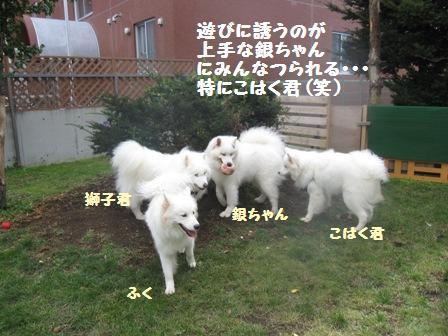 f0212597_944530.jpg
