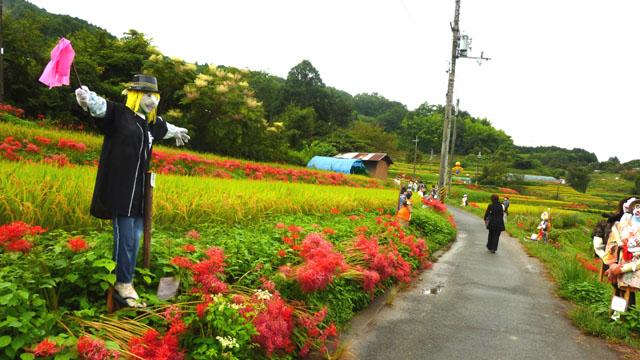 明日香村のヒガンバナ_e0048413_19565471.jpg