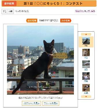 馬肉専門店 菅乃屋 上通店 熊本市城東町。_a0143140_2333503.jpg