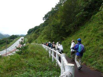八ヶ岳周遊ウォーク第1回・小淵沢から清里_f0019247_10181995.jpg