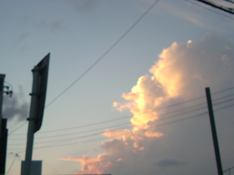 Okinawa in microSD._e0033459_23524233.jpg