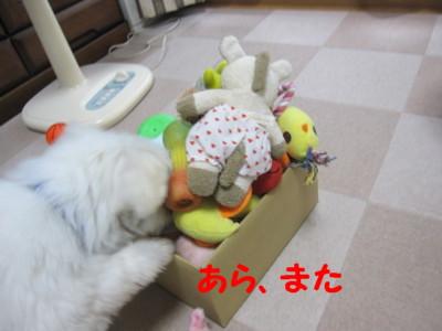 b0193480_2013013.jpg