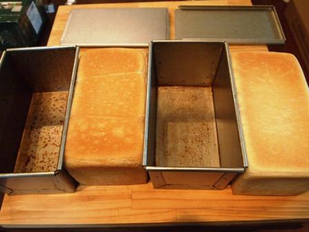 ポーリッシュ種の食パン_e0167593_133083.jpg