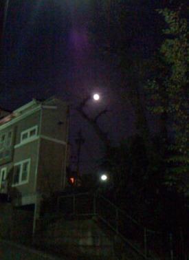 月夜の帰り道_f0061394_1745878.jpg