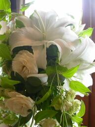 Autumn Bride  カサブランカの花嫁_c0102699_210679.jpg