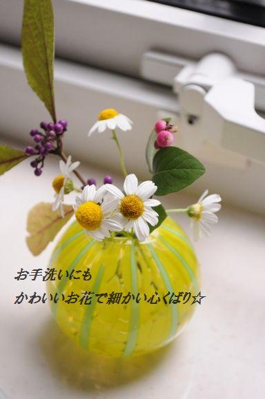 d0104926_2205366.jpg
