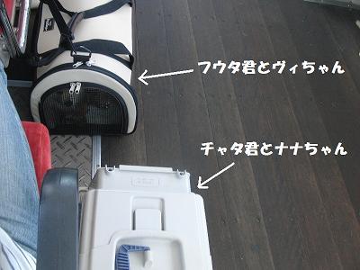 f0186040_2315297.jpg