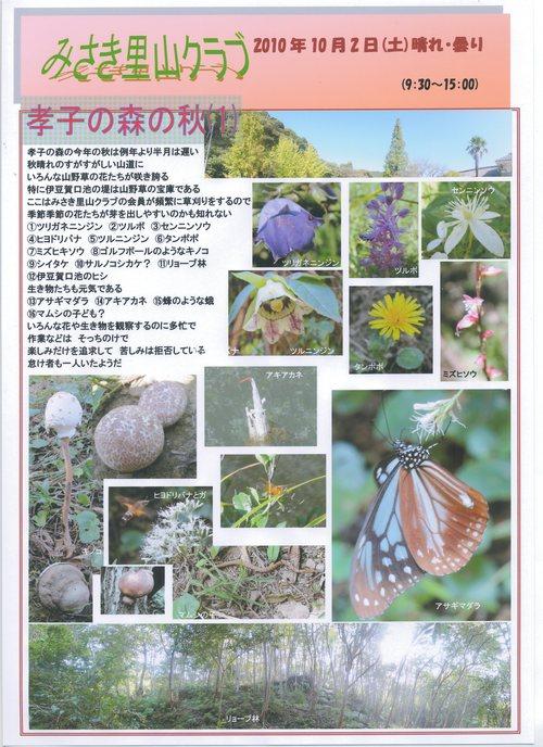孝子の森の秋 Ⅰ_c0108460_2257544.jpg