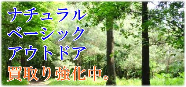 f0162199_1339713.jpg