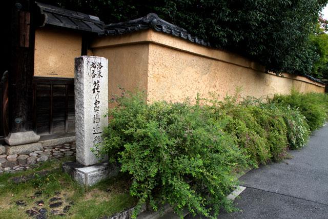 迎称寺の萩_e0048413_12313754.jpg