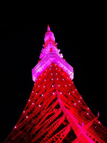 ピンクに染まる東京タワー_c0177814_1712896.jpg