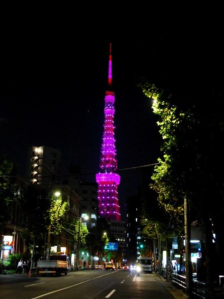 ピンクに染まる東京タワー_c0177814_17302944.jpg
