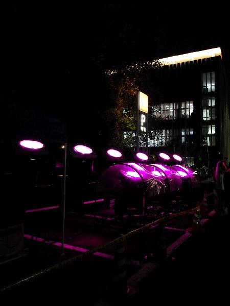 ピンクに染まる東京タワー_c0177814_17304999.jpg