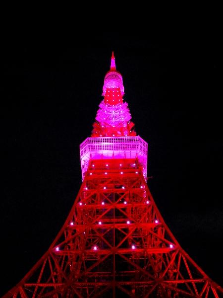 ピンクに染まる東京タワー_c0177814_173183.jpg