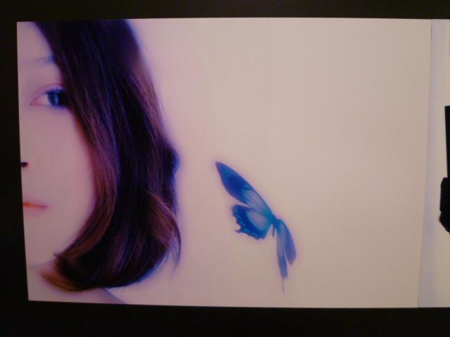 """1381) ニュー・スター「keiko kawano(ケイコ カワノ)・写真展 """"girly""""」 終了・9月2日(木)~9月15日(水)_f0126829_21363486.jpg"""