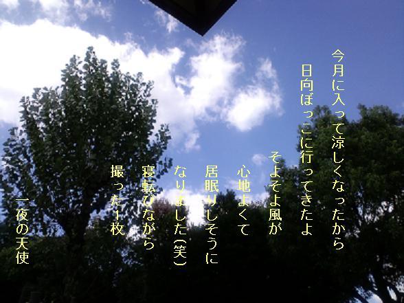 f0140642_13253541.jpg