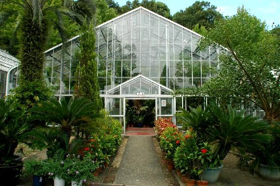 和歌山県植物公園緑花センター _b0093754_23493347.jpg