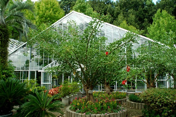 和歌山県植物公園緑花センター _b0093754_23494079.jpg