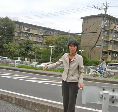 ガードレール設置へ(今年度・花見川団地)_a0162505_11222740.jpg