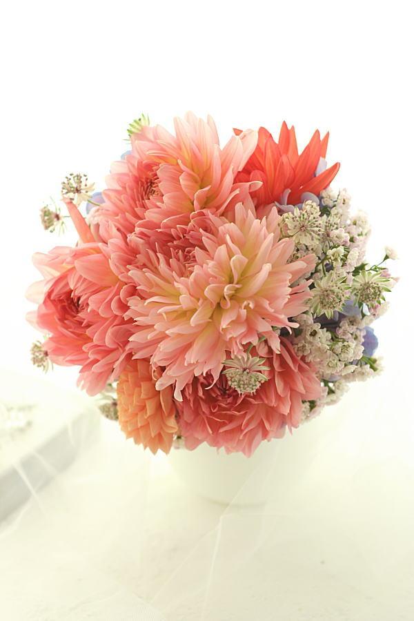 カメラレッスン 自分の花を自分で撮る秘密の練習中 10月_a0042928_2351104.jpg