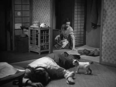 成瀬巳喜男監督『めし』(東宝映画、1951年) その2  _f0147840_23594886.jpg