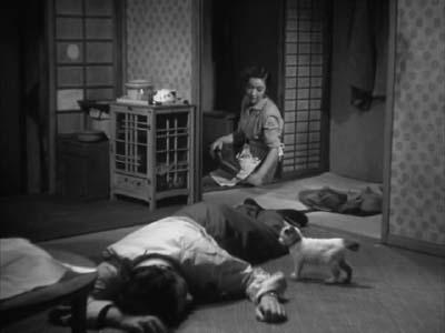 成瀬巳喜男監督『めし』(東宝映画、1951年) その2  _f0147840_23595919.jpg