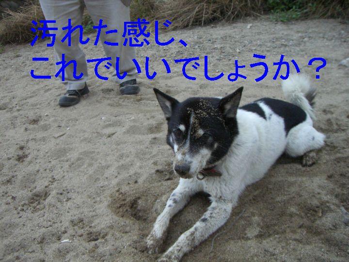 f0053952_141539.jpg