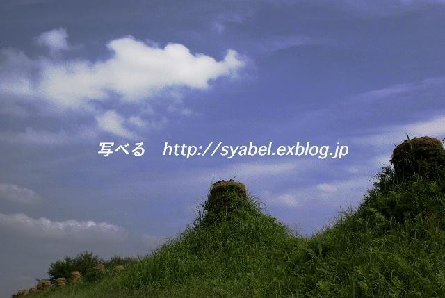 c0153764_20122696.jpg