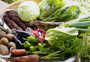 10月2週目の野菜セット不定期便のお知らせ_c0110869_22203823.jpg