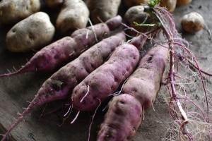 10月3週目の野菜セット不定期便のお知らせ_c0110869_2235249.jpg