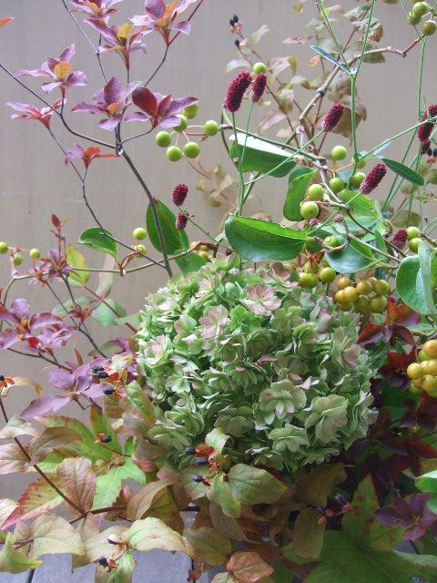 オークリーフ(秋色紫陽花と紅葉と吾亦紅のアレンジメント)_f0049672_17433965.jpg