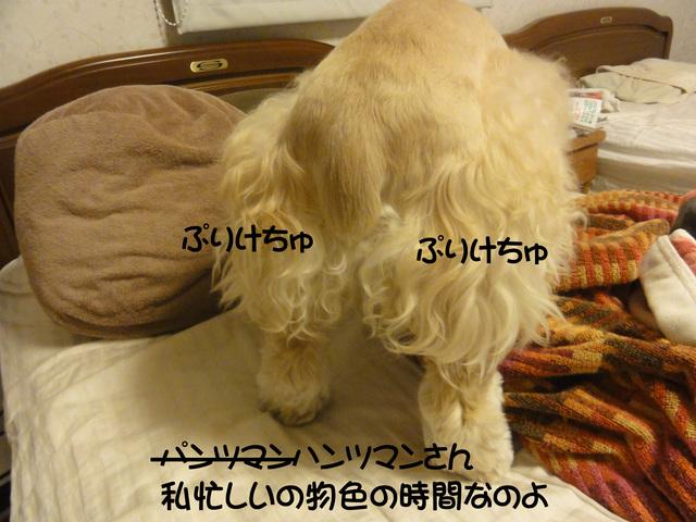 f0218182_11563291.jpg