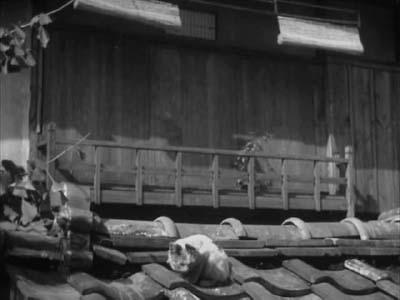 成瀬巳喜男監督『めし』(東宝映画、1951年) その2  _f0147840_085370.jpg